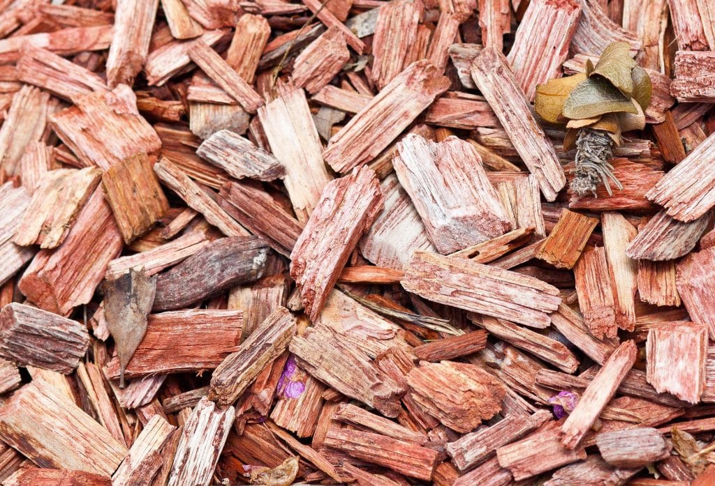 Red wood chips ready for smoking.